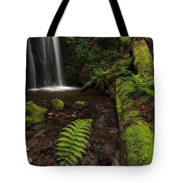 Path Of Life Tote Bag by Mike Reid
