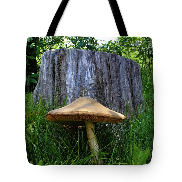 Tote Bag featuring the photograph Path Of Mushrooms by Shane Bechler