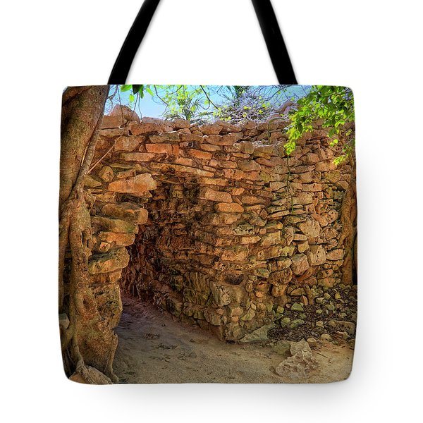 Tote Bag featuring the photograph Path Of The Ancients - Mayan Ruins - Mexico by Jason Politte