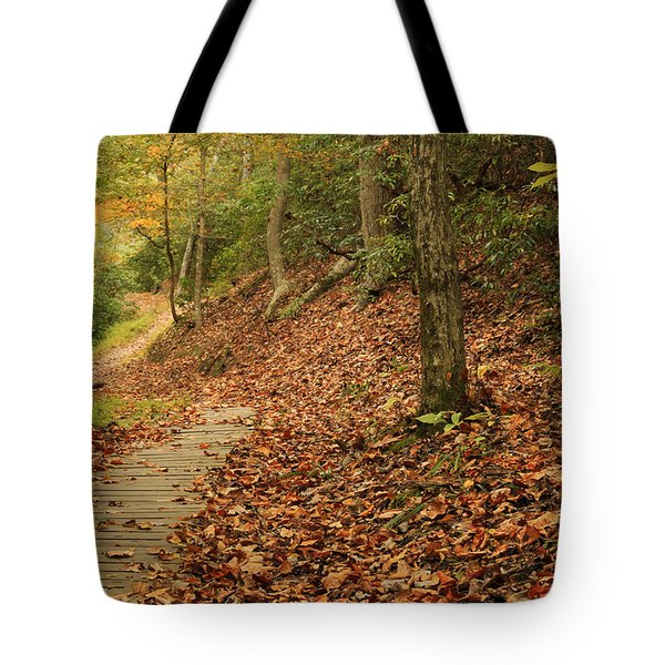 Path To Autumn Tote Bag