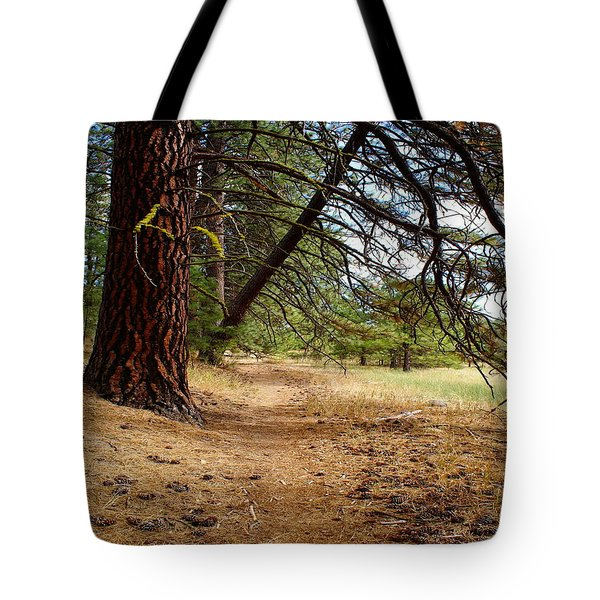 Tote Bag featuring the photograph Path To Enlightenment 1 by Ben Upham III