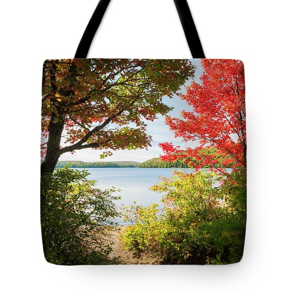 Tote Bag featuring the photograph Path To The Lake by Elena Elisseeva