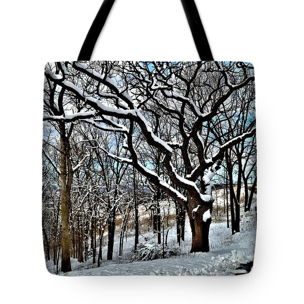 Path To The Lookout Tote Bag