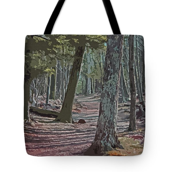 Path We Chose Tote Bag