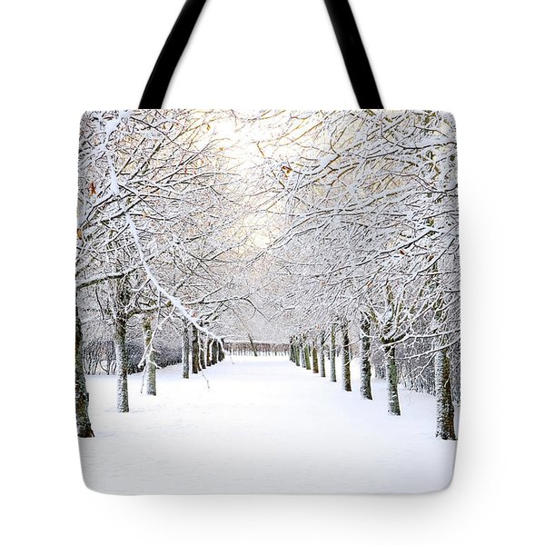 Pathway In Snow Tote Bag by Marius Sipa