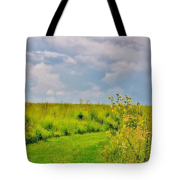 Pathway Through Wildflowers Tote Bag