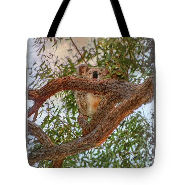 Tote Bag featuring the photograph Patience Brings Koalas by Hanny Heim