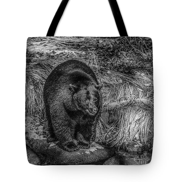 Patient Black Bear Tote Bag
