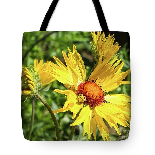 Patient Spider Tote Bag