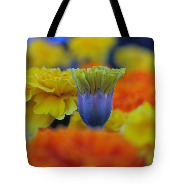 Pattern 274 _ Outstanding Tote Bag