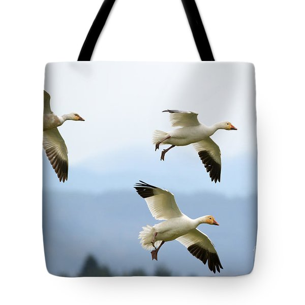 Pattern Of Three Tote Bag