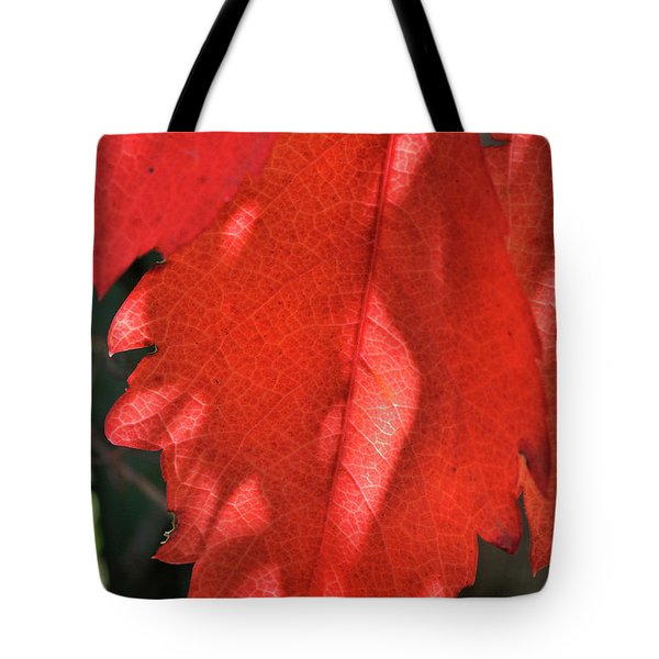 Patterns In Red Tote Bag