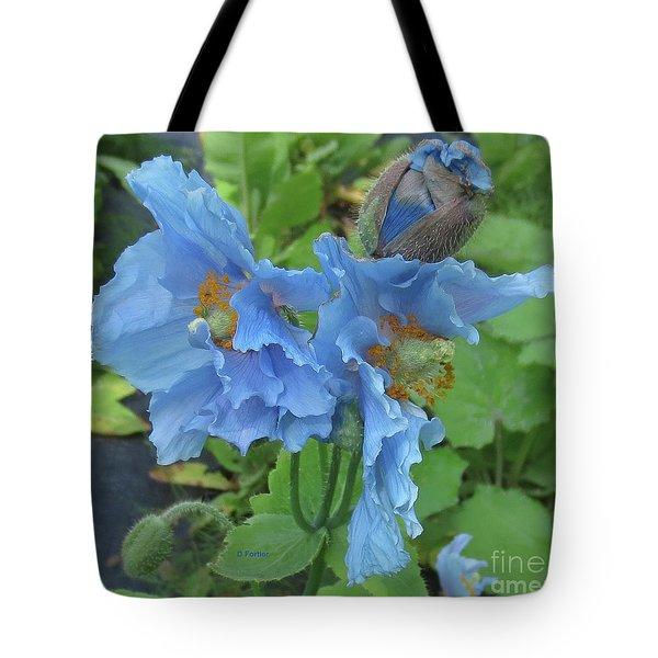Pavot Bleu // Meconopsis Betonicifolia 1 // Blue Poppy Tote Bag