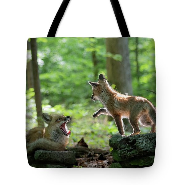 Pawing For You Tote Bag