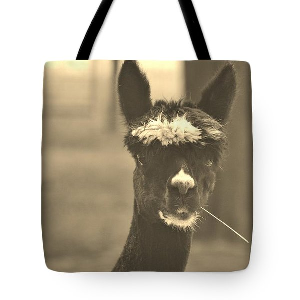 Paying Attention Tote Bag by Vadim Levin