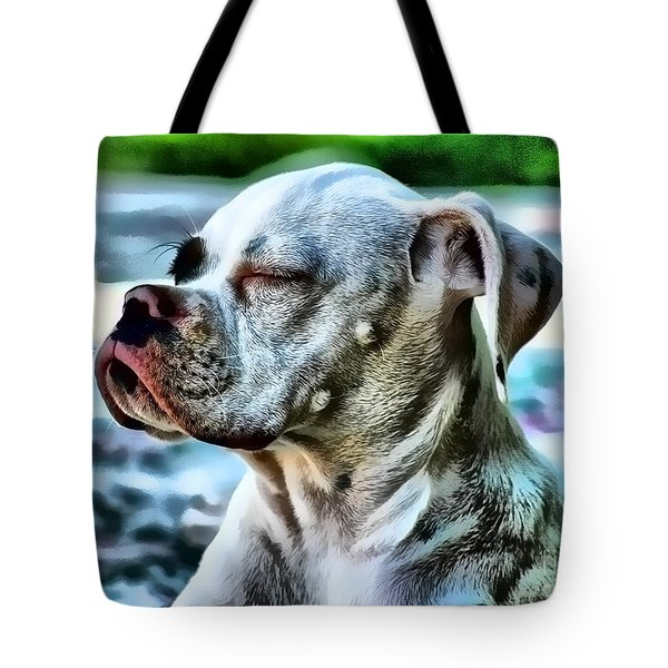 Tote Bag featuring the digital art Peace Of Mind by Kathy Tarochione