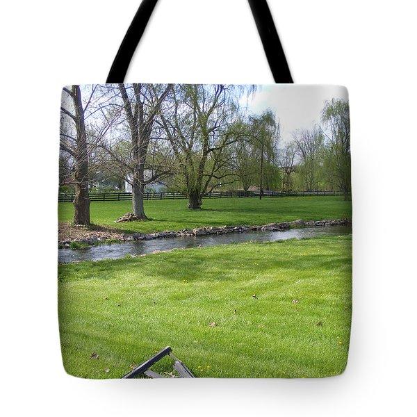 Peaceful Tote Bag by Adam Cornelison