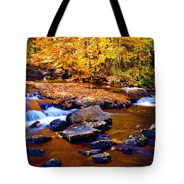 Peaceful Autumn Afternoon  Tote Bag