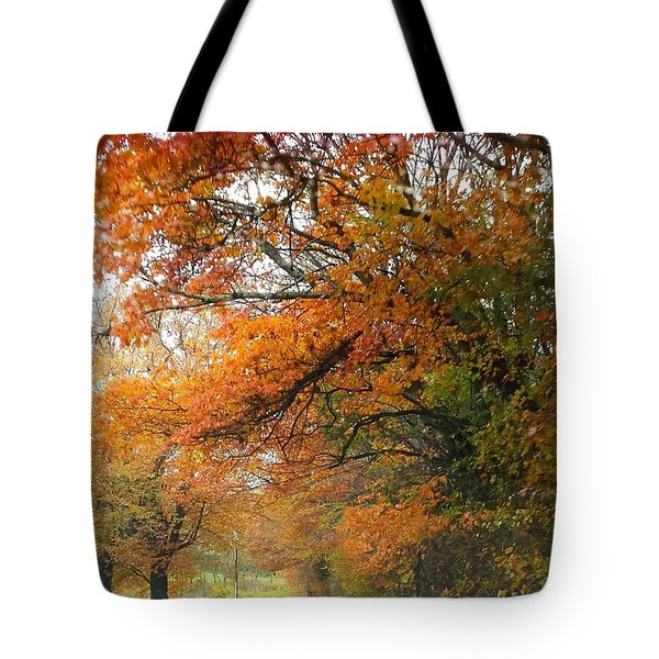 Tote Bag featuring the photograph Peaceful Autumn Road by Deb Martin-Webster