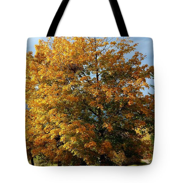 Peaceful Country Road Tote Bag by Will Borden