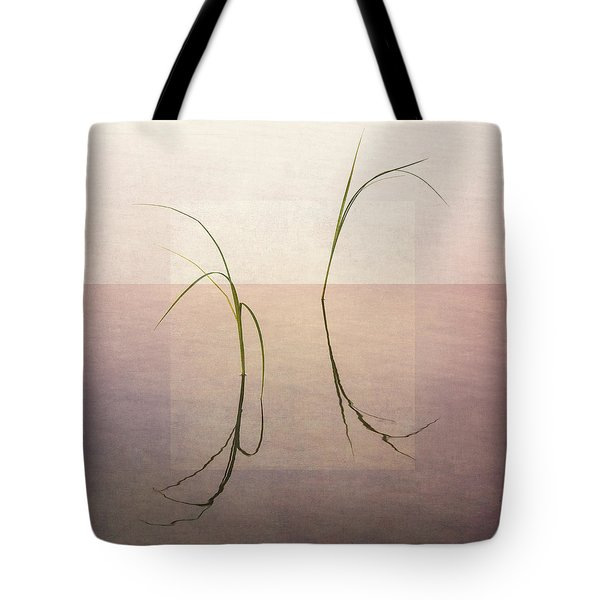 Tote Bag featuring the photograph Peaceful Evening by Ari Salmela