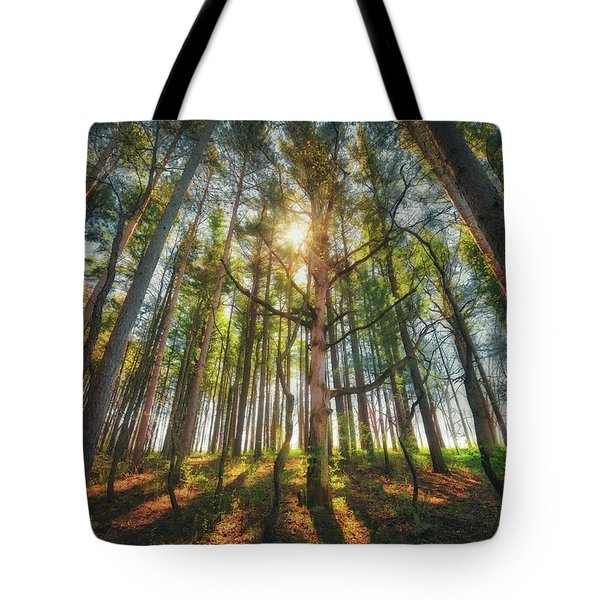 Peaceful Forest 5 - Spring At Retzer Nature Center Tote Bag by Jennifer Rondinelli Reilly - Fine Art Photography