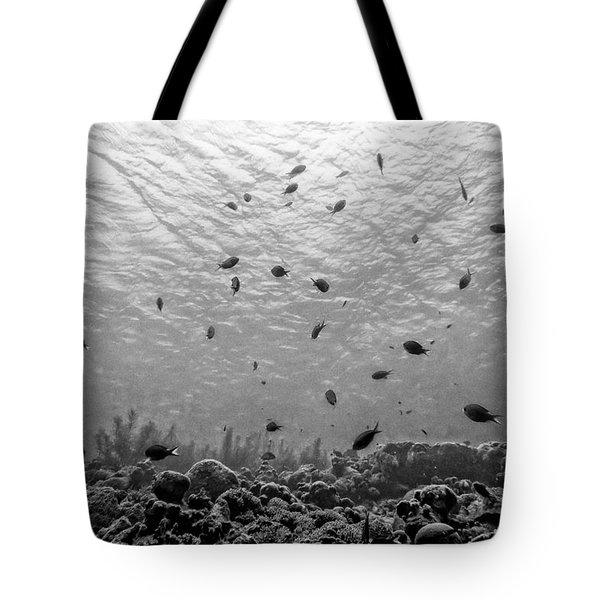 Peaceful Landscape Tote Bag by Perla Copernik