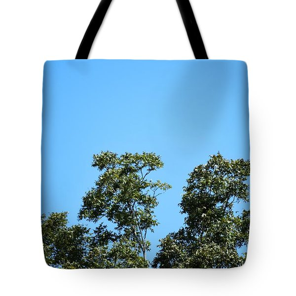 Tote Bag featuring the photograph Peaceful Moment by Ray Shrewsberry