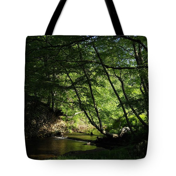 Tote Bag featuring the photograph Peaceful Mountain Stream by Diannah Lynch