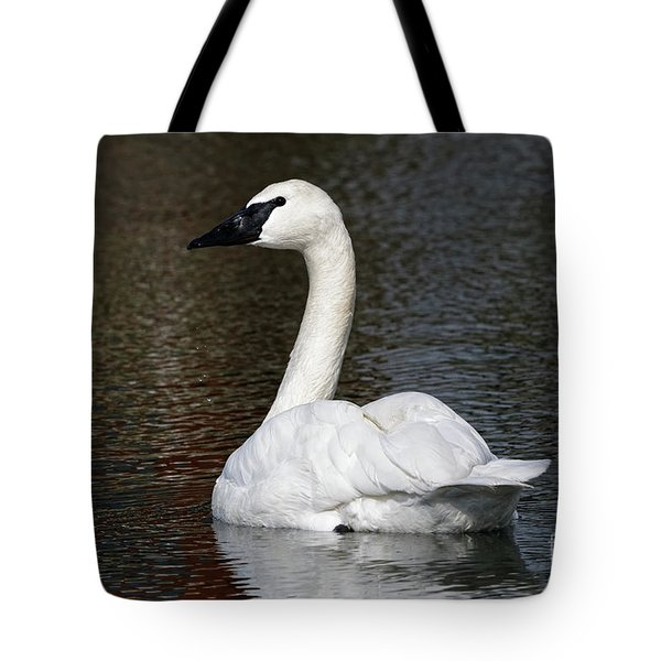Peaceful Swan Tote Bag