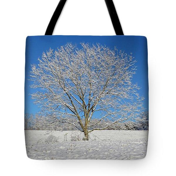 Peaceful Winter Tote Bag by Susan Leggett