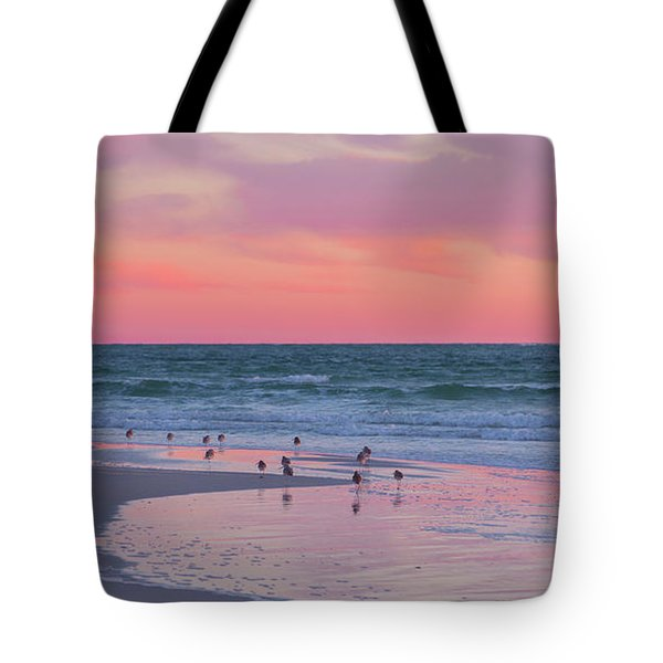 Peaceful Witnesses  Tote Bag