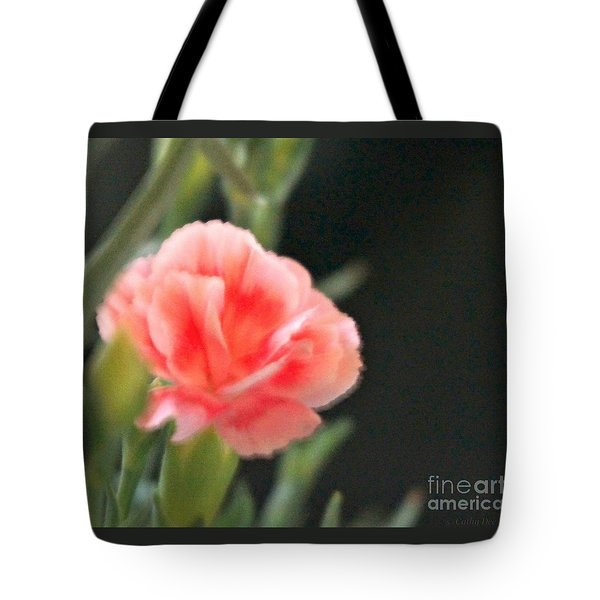 Peach Dream Tote Bag by Cathy Dee Janes
