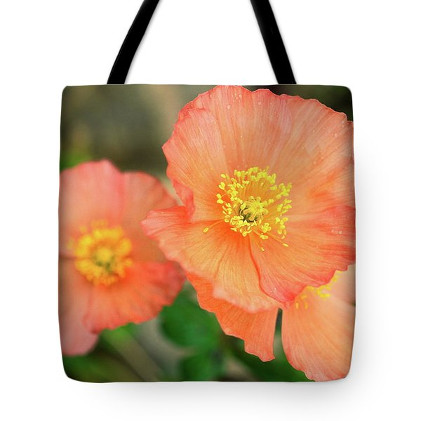 Peach Poppies Tote Bag by Sally Weigand