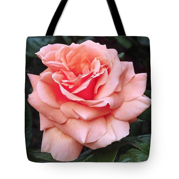 Peach Rose Tote Bag by Rona Black