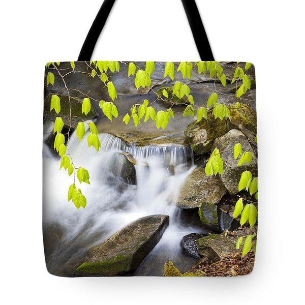 Peacham Brook Spring Tote Bag