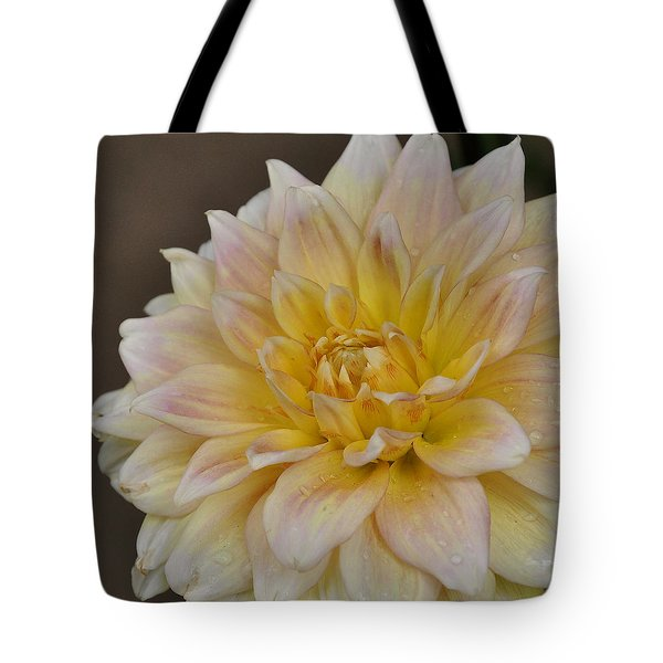 Peaches And Cream Dahlia Tote Bag