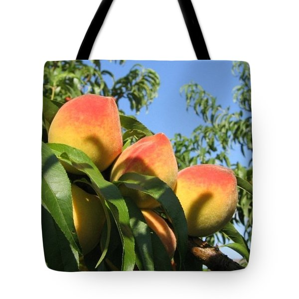 Tote Bag featuring the photograph Peaches by Barbara Yearty
