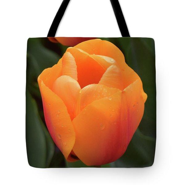 Peachy Keen Tote Bag