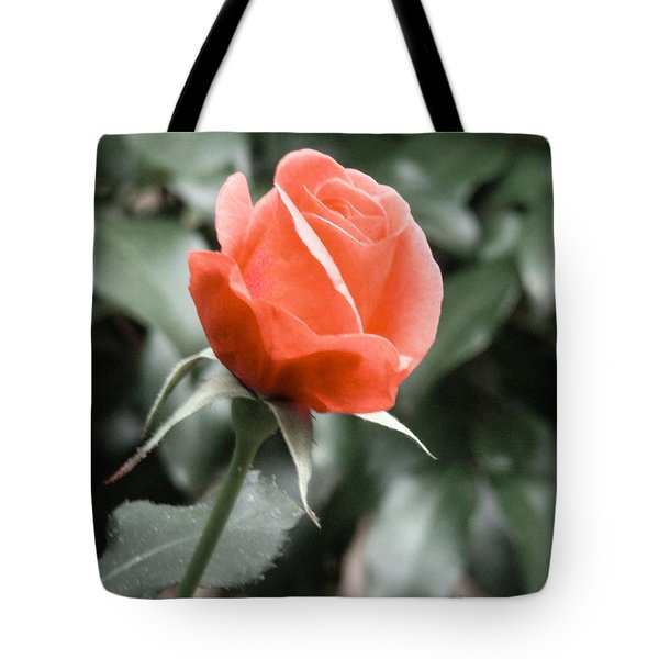 Peachy Rose Tote Bag by Rand Herron