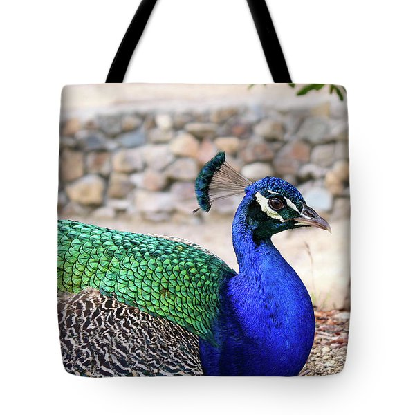 Pretty Proud Peacock Tote Bag