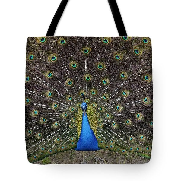 Tote Bag featuring the photograph Peacock Displaying Feathers by Bradford Martin