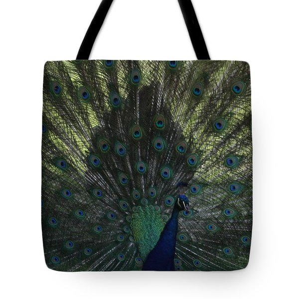 Peacock Eyes Tote Bag by Michelle Miron-Rebbe