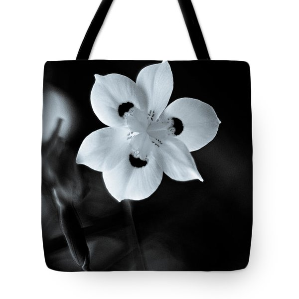 Peacock Flower - Iris - Two Tote Bag