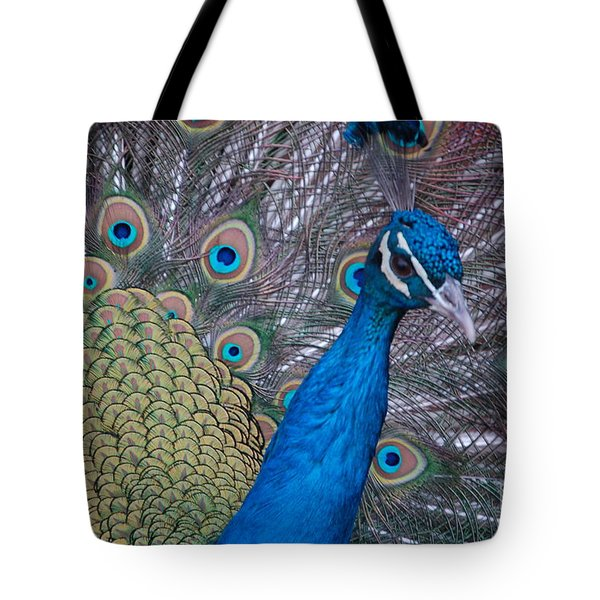 Tote Bag featuring the photograph Peacock by Frank Stallone