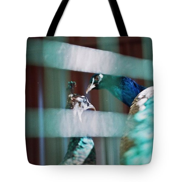 Peacock In The Cage  Tote Bag