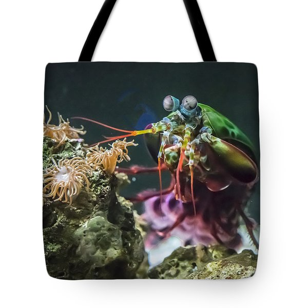 Peacock Mantis Shrimp Profile Tote Bag