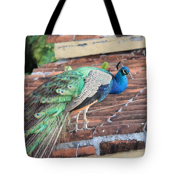 Peacock On Rooftop Tote Bag