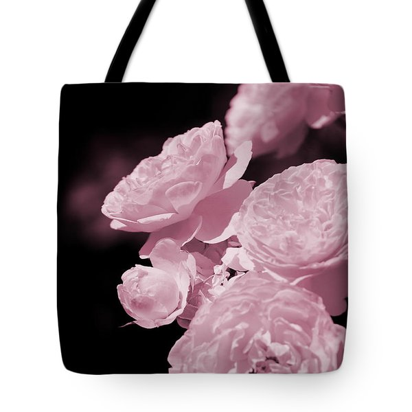 Peacock Pink Cabbage Roses On Black Tote Bag