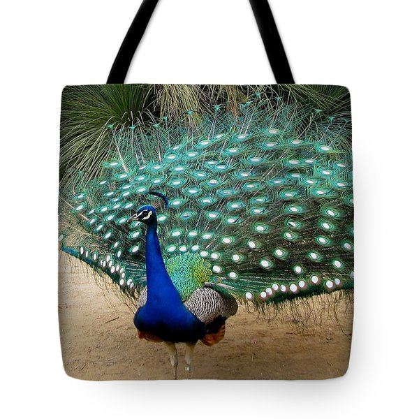 Peacock Showing All Feathers Tote Bag